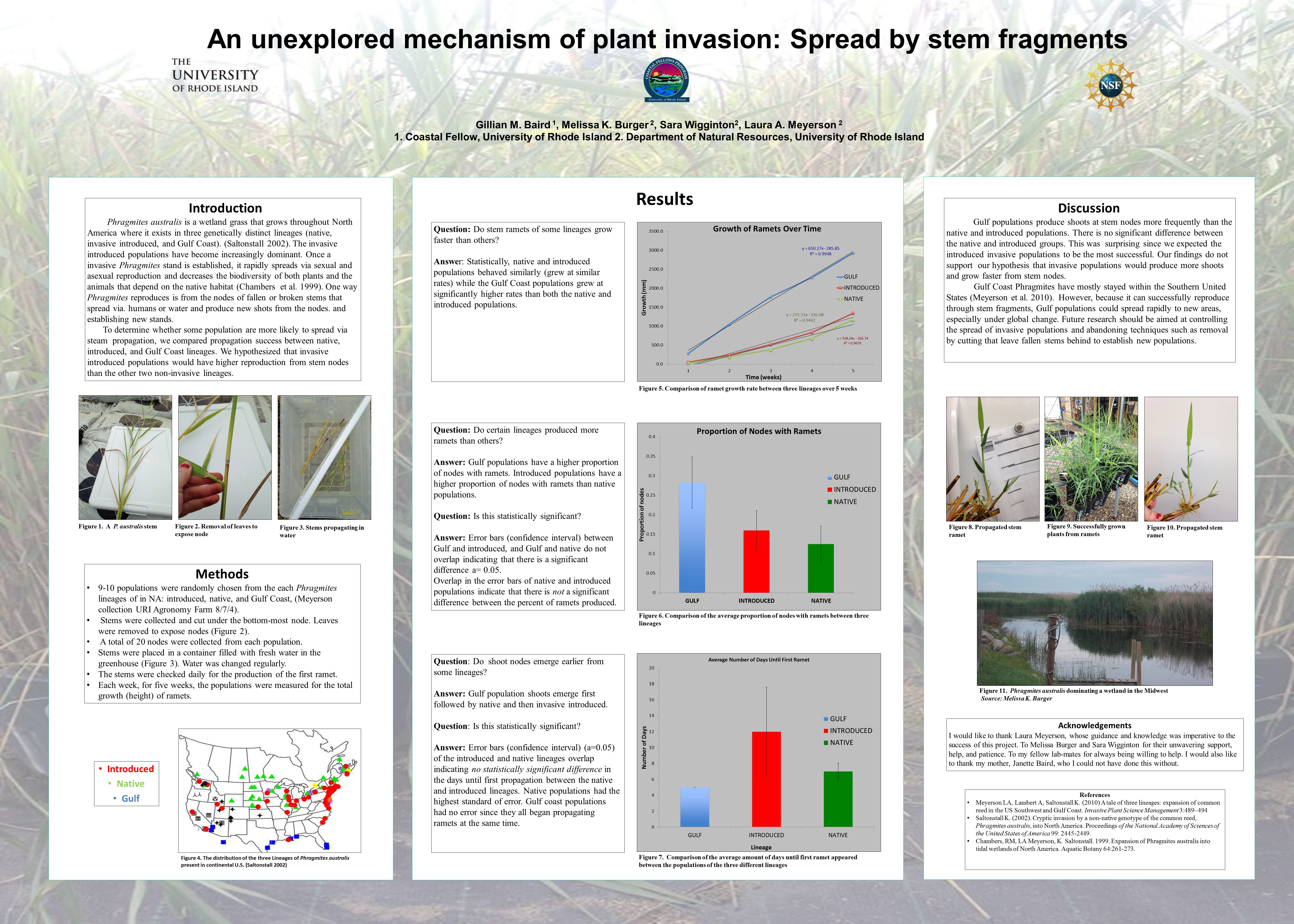 An Unexplored mechanism of plant invasion: Spread by stem fragments